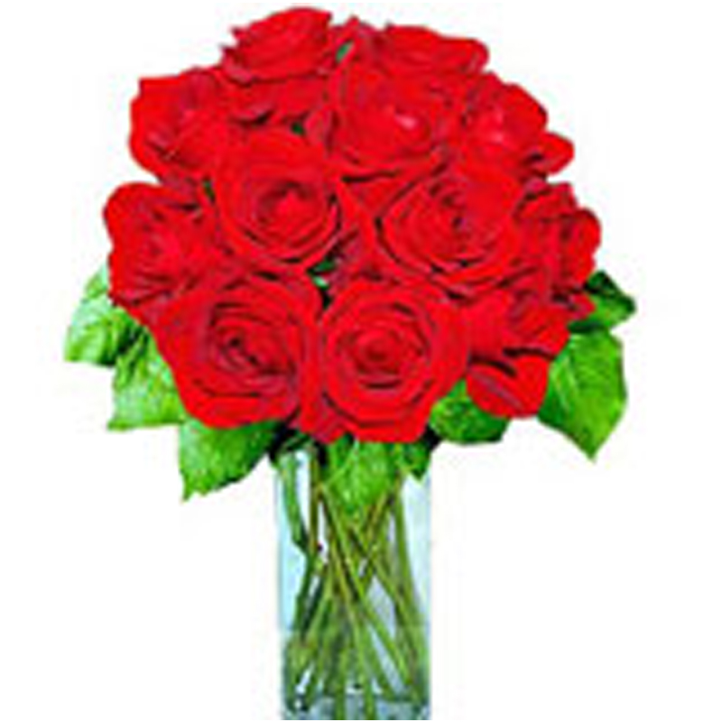 -red-roses 1450